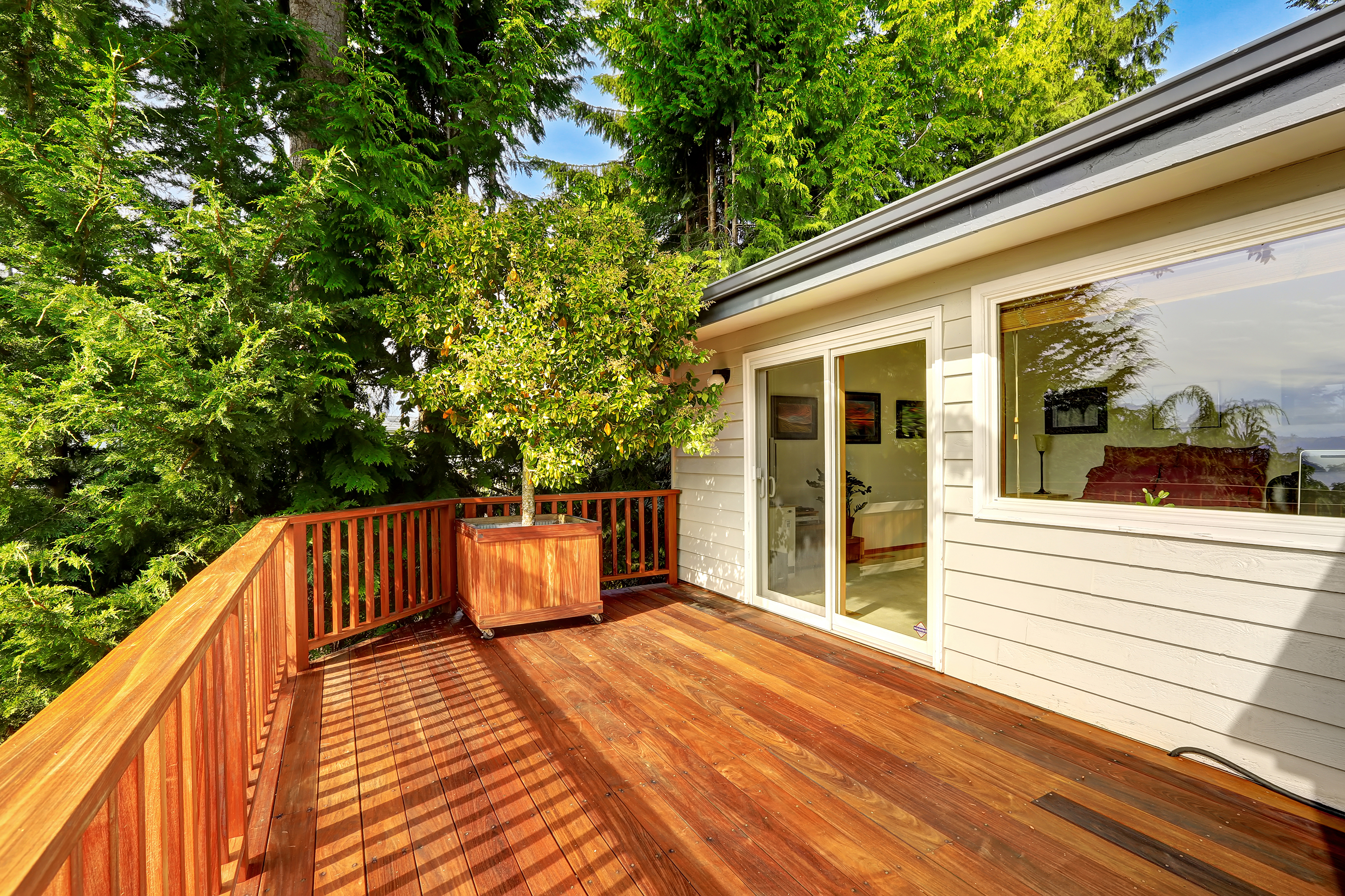 Can Pests Decrease The Value Of A Home By Deck And Siding Damage